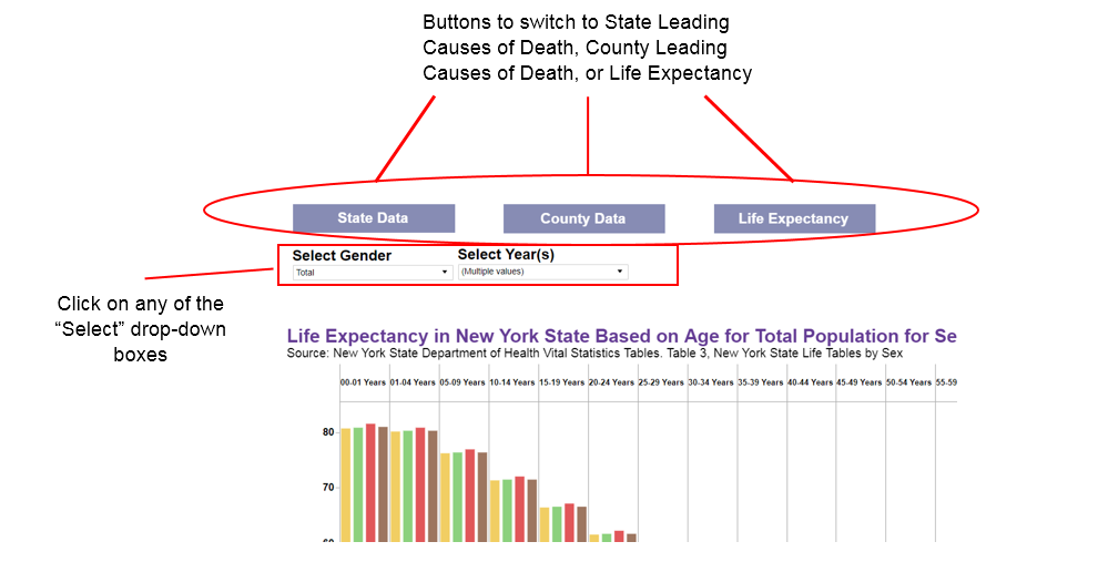 New York State Leading Causes of Death